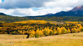 Colores de otoño de Colorado Springs