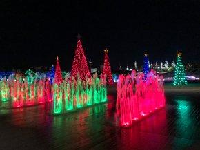 Luzes de Navidad en Tampa