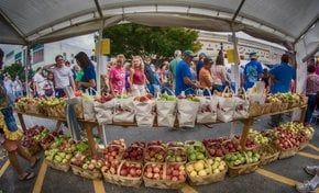 North Carolina Apple Festival