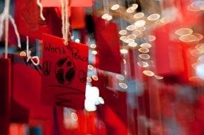 Chinese New Year in Calgary