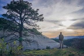 Parc national de Zion Randonnée