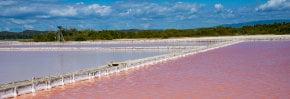 Cabo Rojo Salt Flats