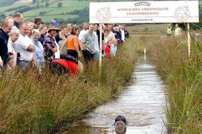 Rude Health Bog Snorkelling Championships
