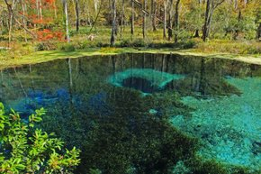 Ichetucknee Blue Hole