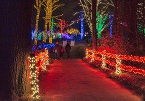 Winter Walk of Lights at Meadowlark Botanical Gardens