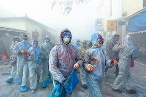Carnevale della guerra della farina Galaxidi