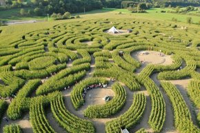 The Labyrinth of Durbuy