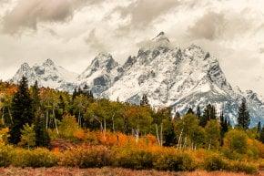 Colores de otoño de Grand Teton