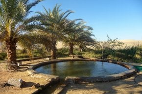 Mineral Springs in Siwa Oasis