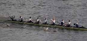 La course des bateaux