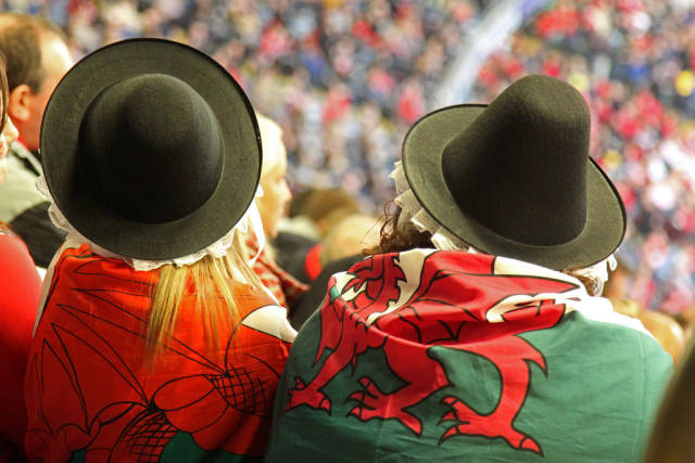 Two Welsh Dragons