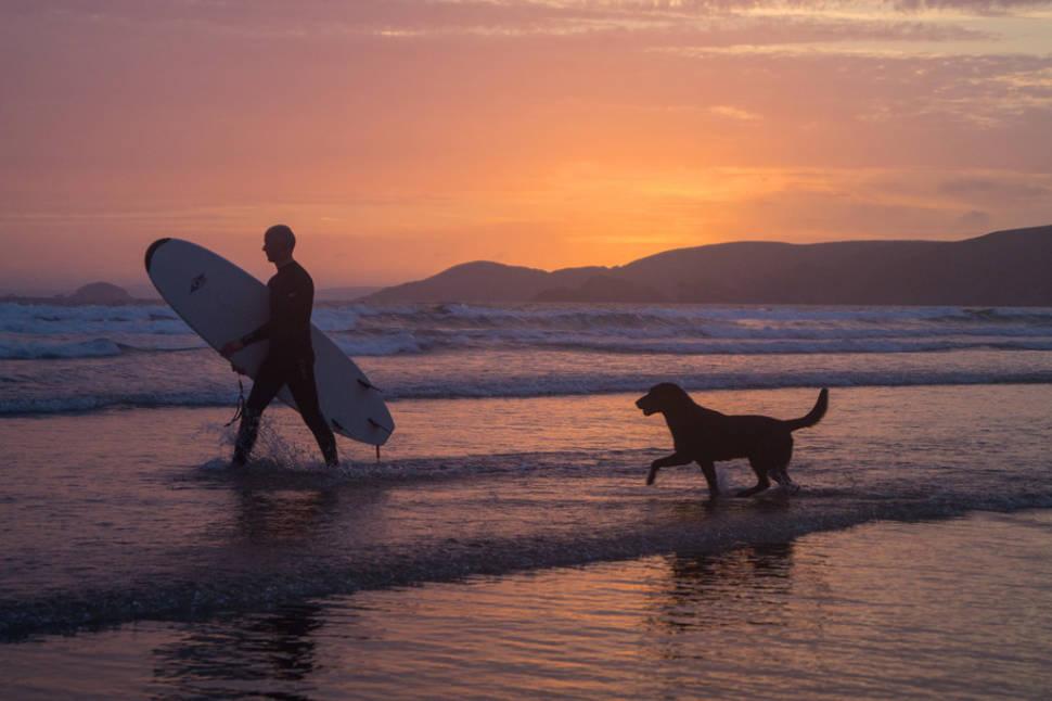 Micky (surfer) and his dog Jake (wannabe surfer), Newgale beach, Pembrokeshire, Wales, UK