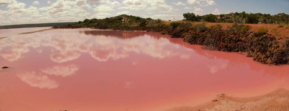 Hutt Lagoon in Western Australia - Best Season