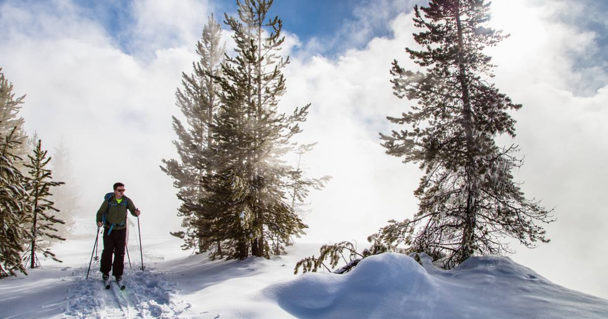 Cross-Country Skiing and Snowshoeing in Yellowstone National Park - Best Time