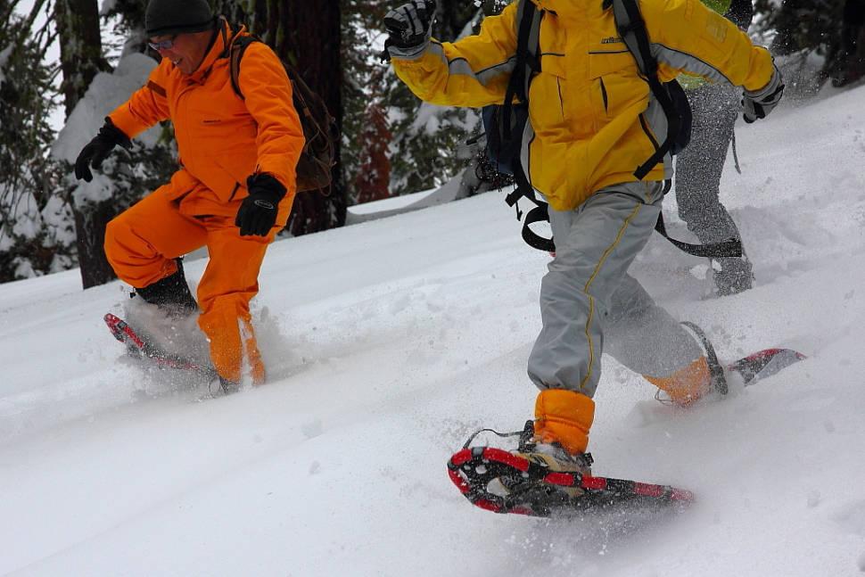 Snowshoeing in Mariposa grove