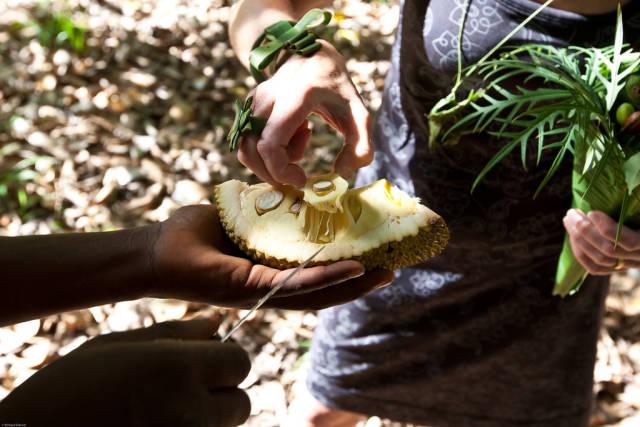 Breadfruit and Jackfruit in Zanzibar - Best Season